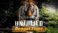 игровой аппарат Untamed Bengal Tiger